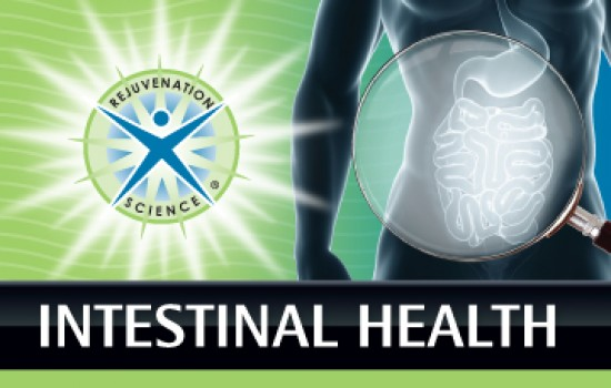Intestinal Health and Detox